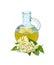 Stock Image : Elderflower cordial