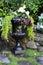 Stock Image : Elegant begonia planter