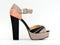 Stock Image : Elegant High Heel Platform