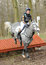 Stock Image : Equestrian sport: horse jumping
