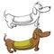 Stock Image : Evil dachshund