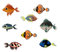 Stock Image : Exotic Fishes.