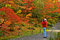 Stock Image : Fall Photography and Photographer