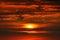 Stock Image : Fantastic sunset