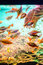 Stock Image : Feeding fish