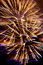 Stock Image : Firework ( Fireworks ) - Stock Photos