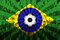 Stock Image : Flag of Brasil over Supporting fans