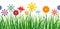 Stock Image : Flower Border