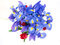 Stock Image : Flower bouquet purple and red