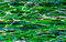Stock Image : Flower Field Acrylic Art Texture