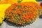 Stock Image : Flower market