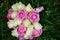 Stock Image : Flowers wedding bride rings
