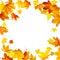 Stock Image : Flying Autumn Leaves