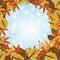 Stock Image :  Fondo del otoño