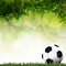 Stock Image : Football in green grass with background colorful