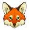 Stock Image : Fox
