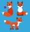 Stock Image : Fox-set