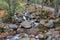 Stock Image : Franconia notch state park, new hampshire, usa
