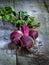Stock Image : Fresh beets