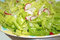 Stock Image : Fresh Garden Salad
