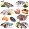 Stock Image : Fresh seafood