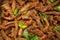 Stock Image : Fried pork with sesame