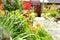 Stock Image : Garden detail