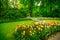 Stock Image : Garden in Keukenhof, tulip flowers. Netherlands