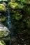 Stock Image : Garden Water Fall