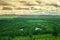 Stock Image : Gen Wetland, Mongolia Province, China