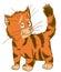 Stock Image : Ginger tabby cat