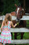 Stock Image : Girl In Dress Feeding Brown Horse Behind Fence