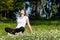 Stock Image : Girl Sitting on Grass