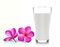 Stock Image : Glass of milk and Tropical flowers frangipani
