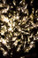 Stock Image : Glittering tree lights