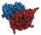 Stock Image : Glucocerebrosidase (beta-glucosidase) enzyme molecule.