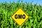 Stock Image : GMO sign