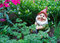 Stock Image : Gnome in garden