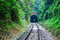 Stock Image : Go into the tunnel,journey with railway