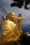 Stock Image : Golden Buddha holding the golden lotus up angle
