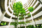 Stock Image : Green garden in car park building