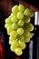 Stock Image : Green grapes