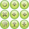 Stock Image : Green icon set №2
