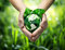 Stock Image : Green planet in your heart hands - usa