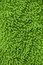 Stock Image : Green texture