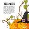 Stock Image : Halloween autumn background with three pumpkins isoalted on whit