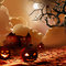 Stock Image : Halloween Background