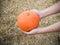 Stock Image : Hand hold pumpkin