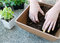 Stock Image : Hands mix up planting soil in square planter