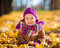 Stock Image : Happy little girl playing in the autumn park